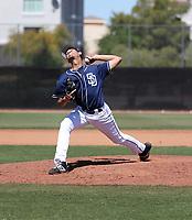 Gabriel Morales - San Diego Padres 2019 spring training (Bill Mitchell)