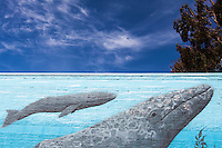"""Whales painted on the side of a building under a blue sky with clouds and tree.  At the lower right, the mural is signed and dated, """"Greenwood 2008""""."""