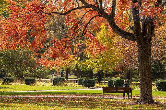 October 29, 2020; Main Quad, fall 2020  (Photo by Barbara Johnston/University of Notre Dame)