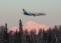 An Alaska Airlines 737 passes Denali as it lands at Anchorage International Airport during the 2018 U.S. National Cross Country Ski Championships at Kincaid Park in Anchorage.