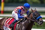 June 7, 2014: Bayern, ridden by Gary Stevens, runs in the 30th running of The Woody Stephens on Belmont Stakes Day in Elmont, NY. Jon Durr/ESW/CSM
