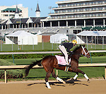 April 23, 2014 Room Service gallops with Calamity Compton at Churchill Downs.  She is a Kentucky Oaks contender trained by Wayne Catalano who won the Ashland Stakes at Keeneland in a dead heat with Rosalind. Owners are Gary and Mary West.