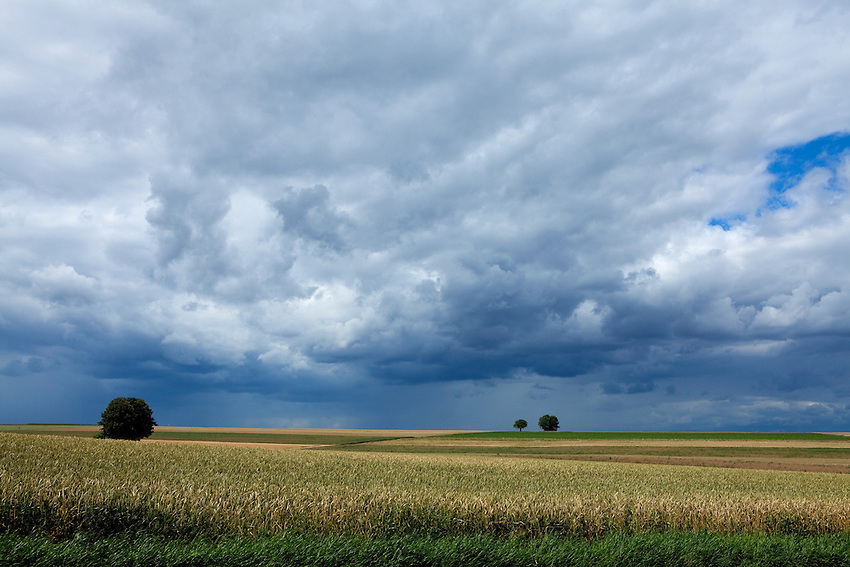 Europa, DEU, Deutschland, Rheinland-Pfalz, Mosel, Terrassenmosel, Untermosel, Lehmen-Moselsuersch, Agrarlandschaft, Himmel, Wolken, Regenwolken, Kategorien und Themen, Natur, Umwelt, Landschaft, Jahreszeiten, Stimmungen, Landschaftsfotografie, Landschaften, Landschaftsphoto, Landschaftsphotographie, Wetter, Himmel, Wolken, Wolkenkunde, Wetterbeobachtung, Wetterelemente, Wetterlage, Wetterkunde, Witterung, Witterungsbedingungen, Wettererscheinungen, Meteorologie, Bauernregeln, Wettervorhersage, Wolkenfotografie, Wetterphaenomene, Wolkenklassifikation, Wolkenbilder, Wolkenfoto....[Fuer die Nutzung gelten die jeweils gueltigen Allgemeinen Liefer-und Geschaeftsbedingungen. Nutzung nur gegen Verwendungsmeldung und Nachweis. Download der AGB unter http://www.image-box.com oder werden auf Anfrage zugesendet. Freigabe ist vorher erforderlich. Jede Nutzung des Fotos ist honorarpflichtig gemaess derzeit gueltiger MFM Liste - Kontakt, Uwe Schmid-Fotografie, Duisburg, Tel. (+49).2065.677997, archiv@image-box.com, www.image-box.com]