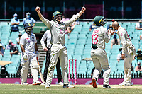 11th January 2021; Sydney Cricket Ground, Sydney, New South Wales, Australia; International Test Cricket, Third Test Day Five, Australia versus India; Marnus Labuschagne of Australia appeals as Matthew Wade of Australia catches the ball