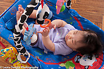 3 month old baby girl Asian Chinese American in infant seat looking at dangling toys reaching to touch one horizontal