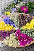 Blütenteller, Blüten, Blumen, Kräuter, Kräuter sammeln, Kräuterernte, Blütenblätter auf einem Teller sortiert zum Trocknen, essbare Blüten. Nachtkerze, Oenothera spec., Evening Primrose, Evening-Primrose, Evening star, Sun drop, Onagre. Gewöhnlicher Beifuß, Beifuss, Artemisia vulgaris, Mugwort, common wormwood. Kartoffel-Rose, Kartoffelrose, Runzel-Rose, Runzelrose, Rose, Rosa rugosa, Japanese Rose. Echtes Mädesüß, Mädesüss, Filipendula ulmaria, Meadow Sweet, Quenn of the Meadow. Blutweiderich, Blut-Weiderich, Lythrum salicaria, Purple Loosestrife, Spiked Loosestrife, Salicaire. Königskerze, Verbascum spec., Mullein. Wegwarte, Zichorie, Cichorium intybus, Chicory. Wilde Möhre, Daucus carota, Wild Carrot. Oregano, Wilder Dost, Echter Dost, Gemeiner Dost, Origanum vulgare, Oregano, Oreganum, Wild Marjoram. Blossom, blossoms, flower, flowers, bloom, blooms, petal, petals.
