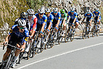 The peloton led by Deceuninck-Quick Step during Stage 16 of La Vuelta d'Espana 2021, running 180km from Laredo to Santa Cruz de Bezana, Spain. 31st August 2021.     <br /> Picture: Cxcling   Cyclefile<br /> <br /> All photos usage must carry mandatory copyright credit (© Cyclefile   Cxcling)