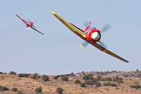 """Mike Brown in the highly modified Hawker Sea Fury """"September Fury"""" leads Dan Martin in """"Dago Red"""" during an Unlimited Air Race while competing in the 2008 Reno Championship Air Races."""