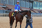 January 18, 2016: Jockey Jon Court aboard #6 Discreetness after winning the Smarty Jones Stakes at Oaklawn Park in Hot Springs, AR. Justin Manning/ESW/CSM