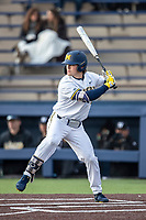 Michigan Wolverines outfielder Jesse Franklin (7) at bat against the Western Michigan Broncos on March 18, 2019 in the NCAA baseball game at Ray Fisher Stadium in Ann Arbor, Michigan. Michigan defeated Western Michigan 12-5. (Andrew Woolley/Four Seam Images)