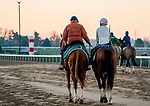 October 31, 2020: Trainer Barclay Tagg leads Tiz The Law as he prepares to exercise in preparation for the Breeders' Cup Classic at Keeneland Racetrack in Lexington, Kentucky on October 31, 2020. Scott Serio/Eclipse Sportswire/Breeders Cup/CSM