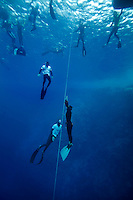 "Diver ascends followed by safety divers during freediving competition ""Bizzy Blue Hole"" in Dahab, Sinai, Egypt."