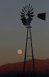 For the first time since 1991, the harvest moon rises on the first day of fall and the Northern Hemisphere's autumnal equinox, as seen Wednesday, Sept. 22, 2010, in Gardnerville, Nev..Photo by Cathleen Allison