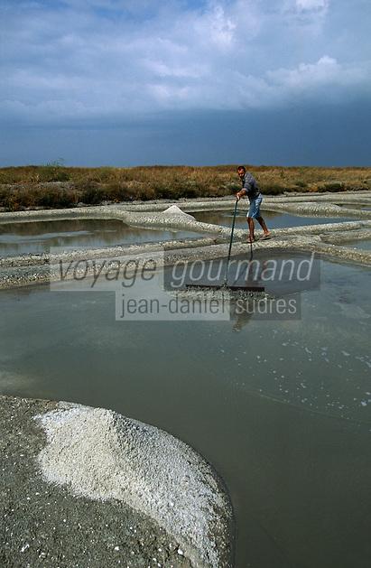 Europe/France/Pays de la Loire/85/Vendée/Ile de Noirmoutier: Récolte du sel dans les marais salants
