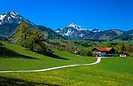Deutschland, Bayern, Oberbayern, Chiemgau: Bauernhof vor Hochgern und Hochfelln   Germany, Bavaria, Upper Bavaria, Chiemgau: farm house with Hochgern and Hochfelln mountains