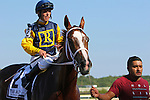 September 07, 2015. Richies Sweetheart, E.T. Baird up, wins the Turf Amazon Handicap Stakes, 5 furlongs for fillies and mares 3 and upward, at  Parx Racing in Bensalem, PA. Trainer is Larry Rivelli (Joan Fairman Kanes/ESW/CSM)