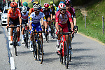 Nicolas Edet (FRA) Cofidis and Julian Alaphilippe (FRA)  Deceuninck-Quick Step part of the breakaway during Stage 4 of Criterium du Dauphine 2020, running 157km from Ugine to Megeve, France. 15th August 2020.<br /> Picture: ASO/Alex Broadway | Cyclefile<br /> All photos usage must carry mandatory copyright credit (© Cyclefile | ASO/Alex Broadway)