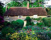 Tom Mackie, FLOWERS, photos, Thomas Hardy's Cottage & Garden, Higher Bockhampton, Dorset, England, GBTM87901-1,#F# Garten, jardín