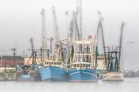 Shrimp Boats Chincoteague Island VA