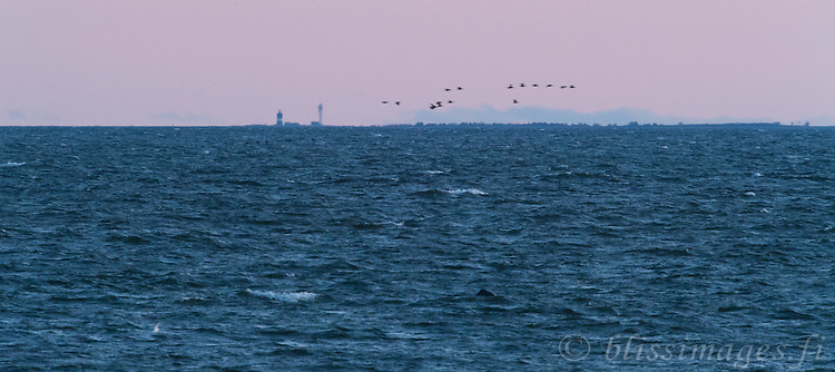 Norrskär Lighthouse at dusk from 20 miles away on the Finnish coast. Rough seas prevent me from crossing this stretch of the Gulf of Bothnia in my little 40 hp boat. I must wait for the wind and waves to calm.