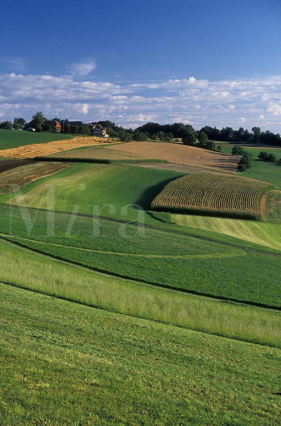 AJ1971, Switzerland, Bern, Europe, Scenic farmland in Belpberg in the Canton of Bern.