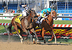 09 May 15: Heart Ashley (no. 2) and Garrett Gomez hold of charging Cinderlla's Wish (no. 4) and Jeremy Rose in the grade 3 Miss Preakness Stakes at Pimlico Race Track in Baltimore, Maryland.
