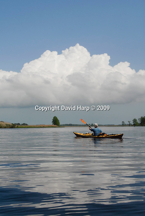 Pocomoke River Kayak Trip, May 15-16,2009