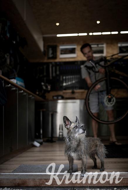 Belgian top custom bike mechanic Vince Van Parijs of Peloton de Paris (Mechelen) assembles a custom Ridley Kanzo gravel bike & is being checked upon by Trixie, the shop dog.<br /> <br /> ©kramon
