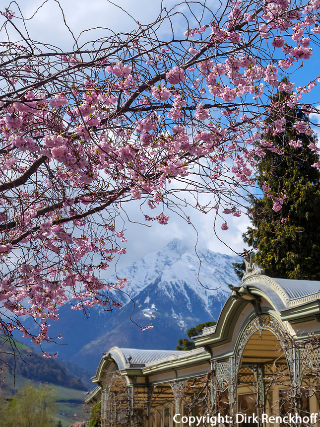 Wandelgang an der Winterpromenade, Meran-Merano, Bozen – Südtirol, Italien<br /> collonade  at  Winter Promenade, Merano, South-Tyrol-Bolzano, Italy