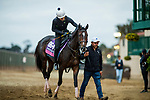 DEL MAR, CA - NOVEMBER 01:  Rushing Fall, owned by eFive Racing Thoroughbreds and trained by Chad C. Brown, exercises in preparation for Breeders' Cup Juvenile Fillies Turf at Del Mar Thoroughbred Club on November 01, 2017 in Del Mar, California. (Photo by Alex Evers/Eclipse Sportswire/Breeders Cup)