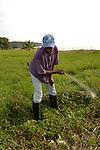 A Garifuna man clears a field with a machet in Barranco village in southern Belize.