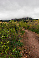 Clouds cover the foothills ahead along Bear Canyon Trail in Boulder, Colorado.
