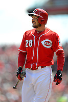 Cincinnati Reds outfielder Chris Heisey #28 during a game against the Miami Marlins at Great American Ball Park on April 20, 2013 in Cincinnati, Ohio.  Cincinnati defeated Miami 3-2 in 13 innings.  (Mike Janes/Four Seam Images)