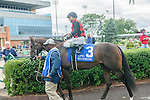 Imperial Dream(3) with Jockey Eurico Rosa Da Silva aboard before the Summer Stakes at Woodbine Race Course in Toronto, Canada on September 13, 2014 with Jockey Patrick Husbands aboard.