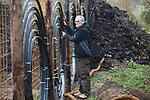 Foto: VidiPhoto<br /> <br /> BENNEKOM – Eigenaar Jan Huiberts van de biologische boomkwekerij Dependens in Bennekom controleert maandag de leidingen voor een nieuwe tak van zijn bedrijf: energiewinning uit herfstbladeren. Huiberts heeft daarvoor een hekwerk geconstrueerd met transportslangen waar doorheen water stroomt. Het hek wordt vervolgens volgestort met al het bladafval van de gemeente Wageningen. De bladeren die op het terrein gecomposteerd worden tot potgrond, leveren tijdens dat proces zo'n 65 graden Celsius aan warmte. Deze energie gebruikt Dependens voor het verwarmen van de plastic kweektunnels. De plantjes uit die tunnels gaan vervolgens weer (terug) naar de gemeente Wageningen. Dependens is de eerste boomkweker in ons land die naast energie- en CO2-neutraal, ook circulair gaat kweken.