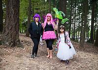 Arts A Glow Festival 2017, Dottie Harper Park, Burien, WA, USA.