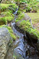 Shallow stream flows through moss covered rocks in Natural Garden (Shizsen-shiki-teien) in Portland Japanese Garden