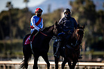 January 30, 2021: Medina Spirit with Able Cedillo at the Robert B Lewis Stakes at Santa Anita Park in Arcadia, California on January 30, 2021. Evers/Eclipse Sportswire/CSM