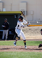 Zach Hogueisson - 2019 Central Arizona College Vaqueros (Bill Mitchell)