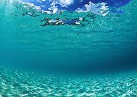 On a  Clear Day.Trunk Bay, St John.US Virgin Islands