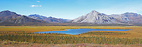 Ambresvajun Lake, named Last Lake by Olaus and Mardy Murie, is located in the Brooks Range near the Sheenjek River, and was the inspiration for the creation of the Arctic National Wildlife Refuge; the landscape glows with fall colors on a late August day. STITCHED PANORAMA