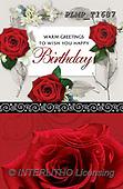 Marek, VALENTINE, VALENTIN, photos+++++,PLMPT1687,#v#, EVERYDAY ,roses