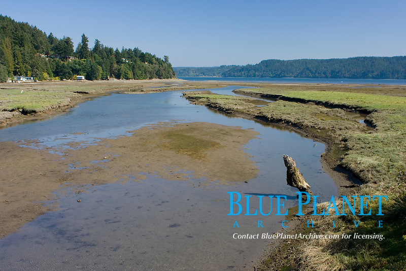 This image depicts one of the many estuaries around the Hood Canal located near the Puget Sound area of Washington State.