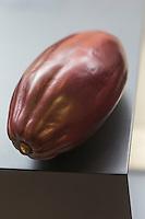 Gastronomie Génrale: Cabosse , fruit  du cacaoyer