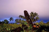Altar at Poliahu heiau, Wailua, east Kauai. One of seven ancient heiau in this region of Kauai.