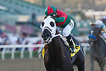 February 04, 2011. Ultimate Eagle and Martin Pedroza win the 65th running of the Strub Stakes(GII) at Santa Anita Park in Arcadia, CA.
