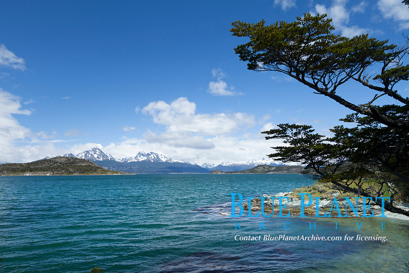 Beagle Channel from Tierra del Fuego National Park, Argentina