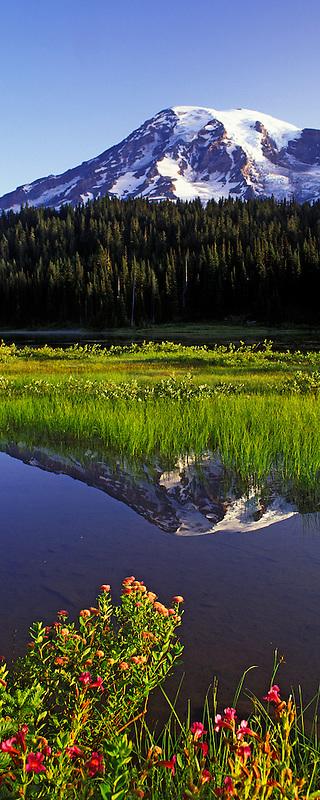Mt. Rainier and Reflection Lake. Mt. Rainier National Park, Washington