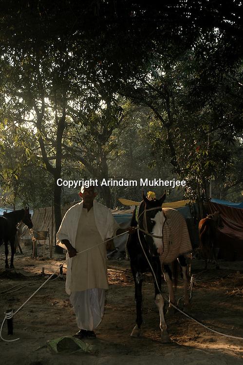 A horse owner with his horse at Sonepur fair ground. Bihar, India, Arindam Mukherjee.