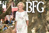 """Mary Berry<br /> arrives for the """"BFG"""" premiere at the Odeon Leicester Square, London.<br /> <br /> <br /> ©Ash Knotek  D3141  17/07/2016"""